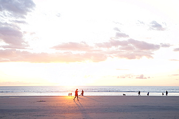 People on the beach at sunset, North Sea, St. Peter-Ording, Schleswig-Holstein, Germany, Europe