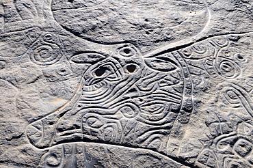 Prehistoric rock engraving of the famous curly cow, neolithic rock art of Tinterhert, Dider Valley, Tassili n'Ajjer National Park, Unesco World Heritage Site, Wilaya Illizi, Algeria, Sahara, North Africa