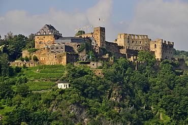 Burg Rheinfels castle in St. Goar, UNESCO World Heritage Site Oberes Mittelrheintal valley, Rhineland-Palatinate, Germany, Europe