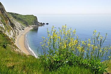 St. Oswald's Bay, Lulworth, Dorset, southern England, England, United Kingdom, Europe