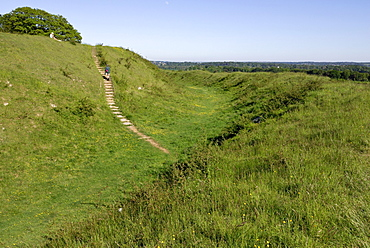 Badbury Rings, an Iron Age hill fort in east Dorset, built about 2200 years ago, southern England, England, UK, Europe