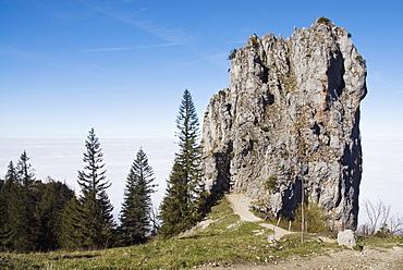 Limestone rock on the panoramic trail to Kampenwand Mountain, Upper Bavaria, Bavaria, Germany, Europe