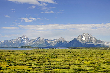 Willow Flats with Teton Range mountain chain and Mount Moran and Jackson Lake at back, Grand Teton National Park, Wyoming, USA, North America