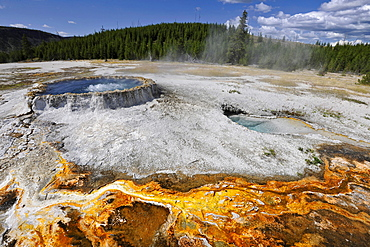 Punch Bowl Spring, geyser, drainage area, coloured thermophilic bacteria, microorganisms, Black Sand Basin, Upper Geyser Basin, Yellowstone National Park, Wyoming, United States of America, USA