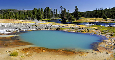 Black Opal Spring, geyser, Biscuit Basin, Upper Geyser Basin, Yellowstone National Park, Wyoming, United States of America, USA