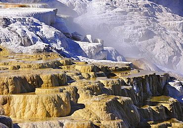 Canary Spring Terrace, limestone sinter terraces, geysers, hot springs, colorful thermophilic bacteria, Mammoth Hot Springs Terraces in Yellowstone National Park, Wyoming, United States of America, USA