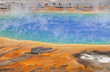Tourists on boardwalk, Grand Prismatic Spring, Midway Geyser Basin, colored thermophilic bacteria, microorganisms, hot springs, Yellowstone National Park, Wyoming, United States of America, USA