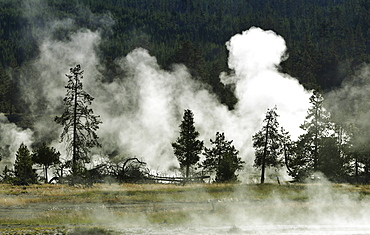 Steaming geothermal springs and geysers, Firehole River, Midway Geyser Basin, Yellowstone National Park, Wyoming, United States of America, USA
