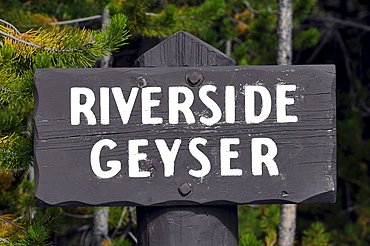 Sign Riverside Geyser, Upper Geyser Basin, geothermal springs in Yellowstone National Park, Wyoming, United States of America, USA