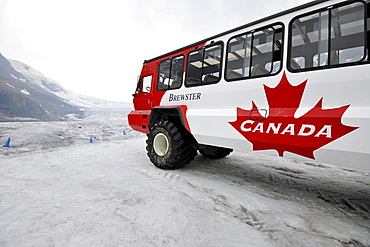 Brewster special bus, Ice Explorer Snowcoach, snowmobile for tourists to explore the glacier, Athabasca Glacier, Columbia Icefield, Icefields Parkway, Jasper National Park, Canadian Rockies, Rocky Mountains, Alberta, Canada