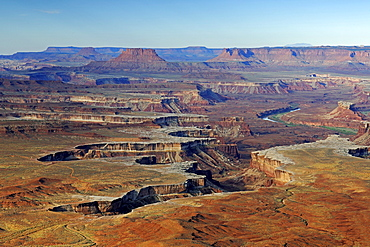 Green River View Point at sunrise, Canyonlands National Park, Utah, USA