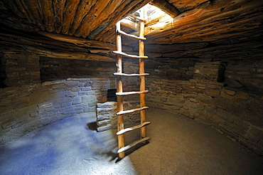 Ladder into an underground room, Kiwa, Spruce Tree House, a cliff dwelling of the Native American Indians, about 800 years old, Mesa Verde National Park, UNESCO World Heritage Site, Colorado, USA, North America