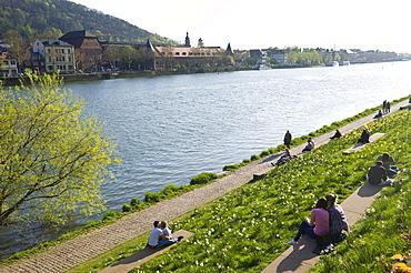On the bank of the Neckar River, Heidelberg, Palatinate, Baden-Wuerttemberg, Germany, Europe