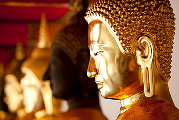 Buddha statues, Wat Po Temple, Bangkok, Thailand, Asia