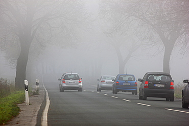 Road between Essen and Bochum in dense fog, autumn, visibility below 100 metres, North Rhine-Westphalia, Germany, Europe