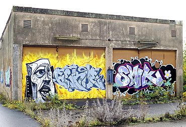 Transformer station painted with graffiti, a former train repair centre, closed in 2003, Wedau district, Duisburg, North Rhine-Westphalia, Germany, Europe