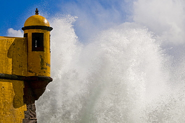 Rolling wave at the yellow castle, Fortaleza de Sao Tiago, at the coast, Funchal, Madeira, Portugal, Europe