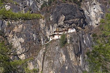Taktshang Goemba, Tiger's Nest Monastery, Bhutan, Asia