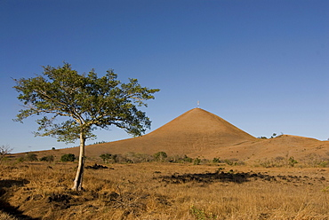 Savannah landscape at the northern tip of Madagscar, Africa