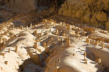 Sandstone rock formations, Tsingy, Ankarafantsika National Park, Madagascar, Africa