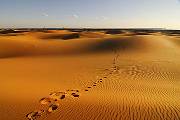 Footprints in the sand dunes of the Sahara, Merzouga, Morocco, Africa