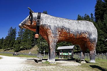 Wood Ox, Teichalm mountain pasture, Almenland area, Styria, Austria, Europe
