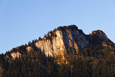 Roter Stein mountain, Vilstal valley, Tannheimer Berge mountain range, Tyrol, Austria, Europe