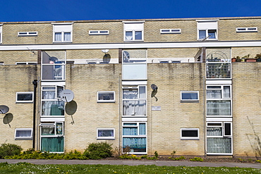 Council flat housing, Golden Grove, Southampton, Hampshire, England, United Kingdom, Europe