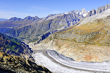 View from Bettmerhorn Mountain over the western end section of the Aletsch Glacier, Canton of Valais, Switzerland, Europe