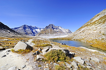 Maerjelensee, a glacial lake on the eastern edge of the Aletsch Glacier, Canton of Valais, Switzerland, Europe