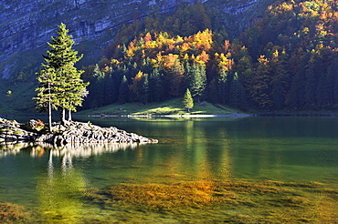 Autumnal light mood on the shore of Seealp Lake, at 1143 m altitude, Canton of Appenzell Inner-Rhodes, Switzerland, Europe
