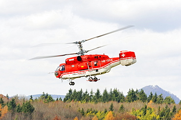 Russian Kamov KA 32 A12 heavy-lift helicopter from the Swiss company Heliswiss during a transport operation, Germany, Europe