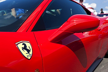 Ferrari logo and door mirror