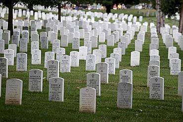 Arlington National Cemetery, Arlington, Virginia, USA, North America