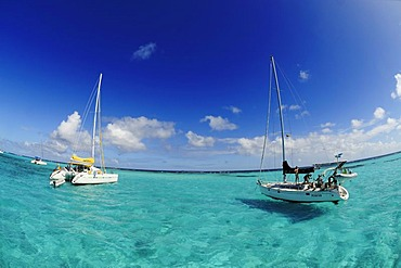 Sailboats on a sailing trip, Tobago Cays, Saint Vincent, Caribbean