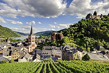 View of Bacharach on the Rhine with St. Peter church, Wernerkapelle chapel and Burg Stahleck castle, Rhineland-Palatinate, Germany, Europe
