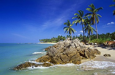 Palm beach, Klong Khong Beach, Ko Lanta island, Krabi, Thailand, Southeast Asia