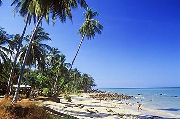Palm beach, Long Beach, Phra Ae Beach, Ko Lanta island, Krabi, Thailand, Southeast Asia