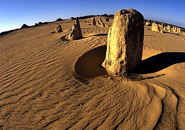 Rock formation The Pinnacles, Nambung National Park, Western Australia, Australia