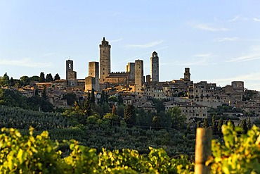 Medieval town of San Gimignano from distance in morning light, Tuscany, Italy, Europe