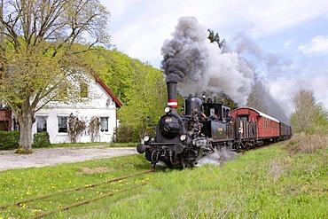 Steam locomotive, Schlei, Schleswig-Holstein, Germany, Europe