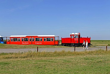 Island train, Langeoog, East Frisian Island, East Frisia, Lower Saxony, Germany, Europe