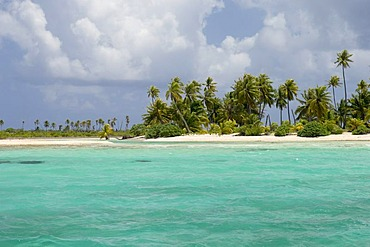 Tikehau coral atoll, Tuamotu Archipelago, French Polynesia, Pacific Ocean
