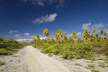Gravel road, Fakarava, Havaiki-te-araro, Havai'i or Farea, Tuamotu Archipelago, French Polynesia, Pacific Ocean