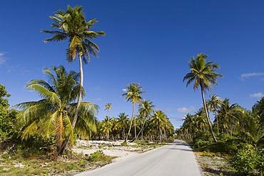 Road, Fakarava, Havaiki-te-araro, Havai'i or Farea, Tuamotu Archipelago, French Polynesia, Pacific Ocean