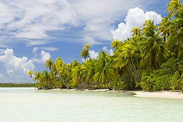 Blue Lagoon, Rangiroa atoll, Tuamotu Archipelago, French Polynesia, Pacific Ocean
