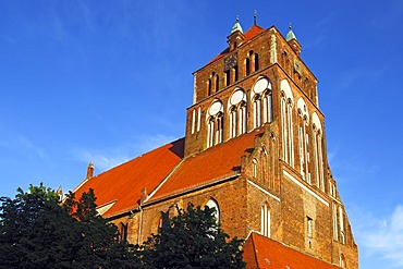 Historic St.-Marien-Kirche church in the old town of Greifswald, European Route of Brick Gothic, Mecklenburg-Western Pomerania, Germany, Europe