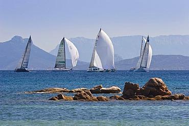 Luxury yachts at Costa Smeralda, Mediterranean Sea, Sardinia, Italy, Europe