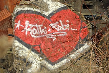 Graffiti on the ruins of a former military base, Hohe Warte near Giessen, Hesse, Germany, Europe