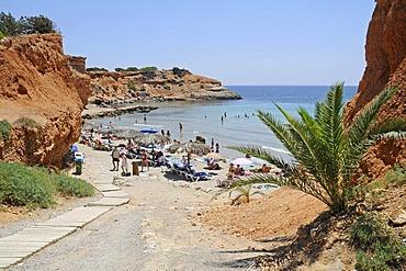 Cliffs, palm trees and bay, Sa Caleta, beach, Ibiza, Pityuses, Balearic Islands, Spain, Europe